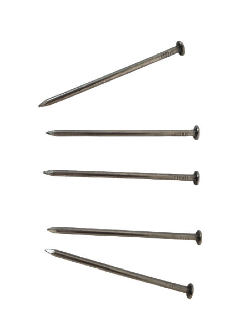 Common nails Image